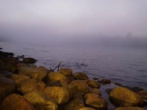 Laxfiske i Kalix älvdal